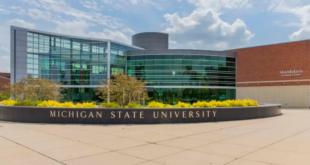 Michigan State University International